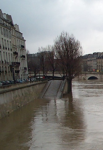 flooded seine: