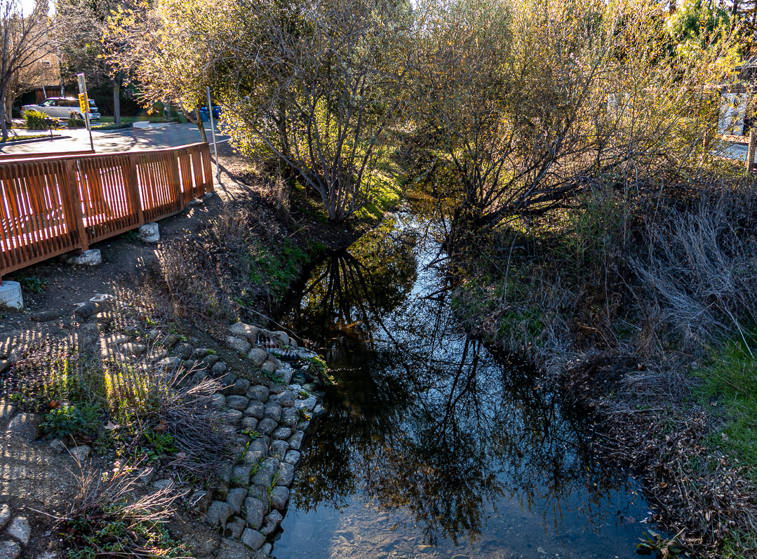 Reflections in Ross Creek